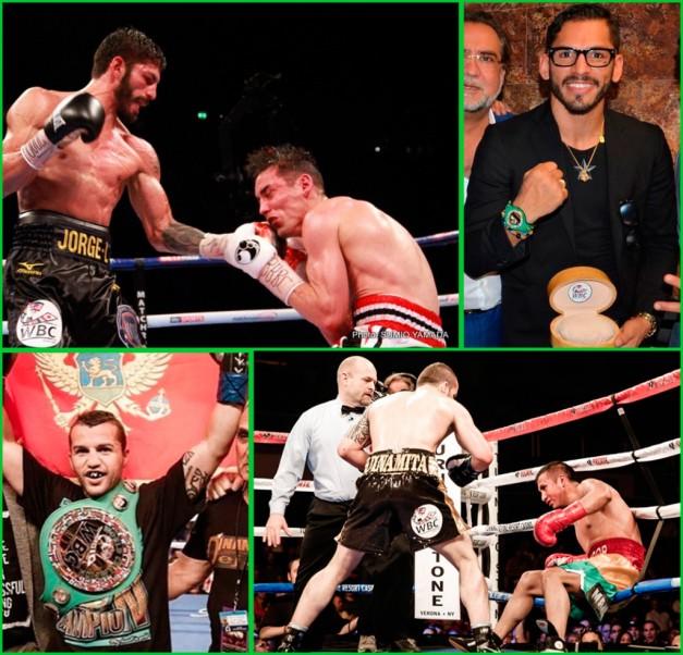 WBC Lightweight Division Update