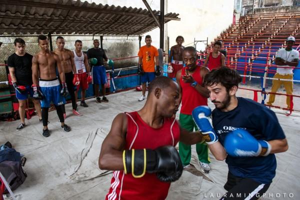 Cuban Boxing Photos - Laura Ming Wong
