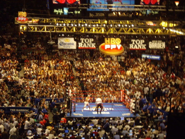 MSG Boxing