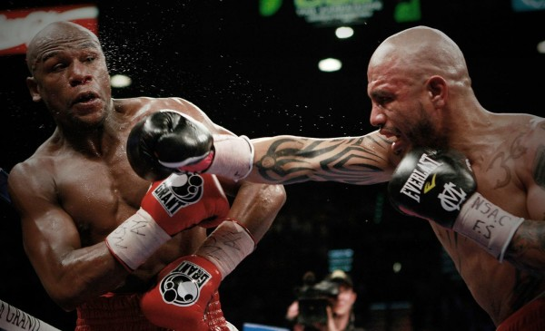 Mayweather - Cotto - WillHart