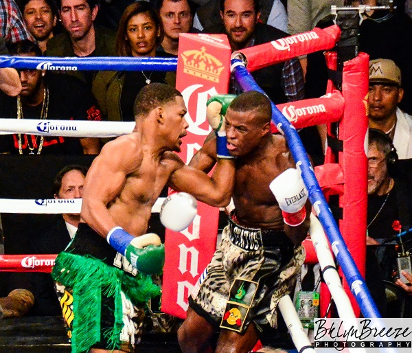 Jacobs vs. Quillin - Brant Wilson RBRBoxing (1)