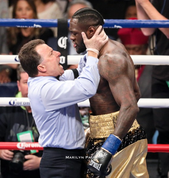 Deontay Wilder Vs. Bermane Stiverne Fight