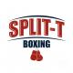 Split T Logo